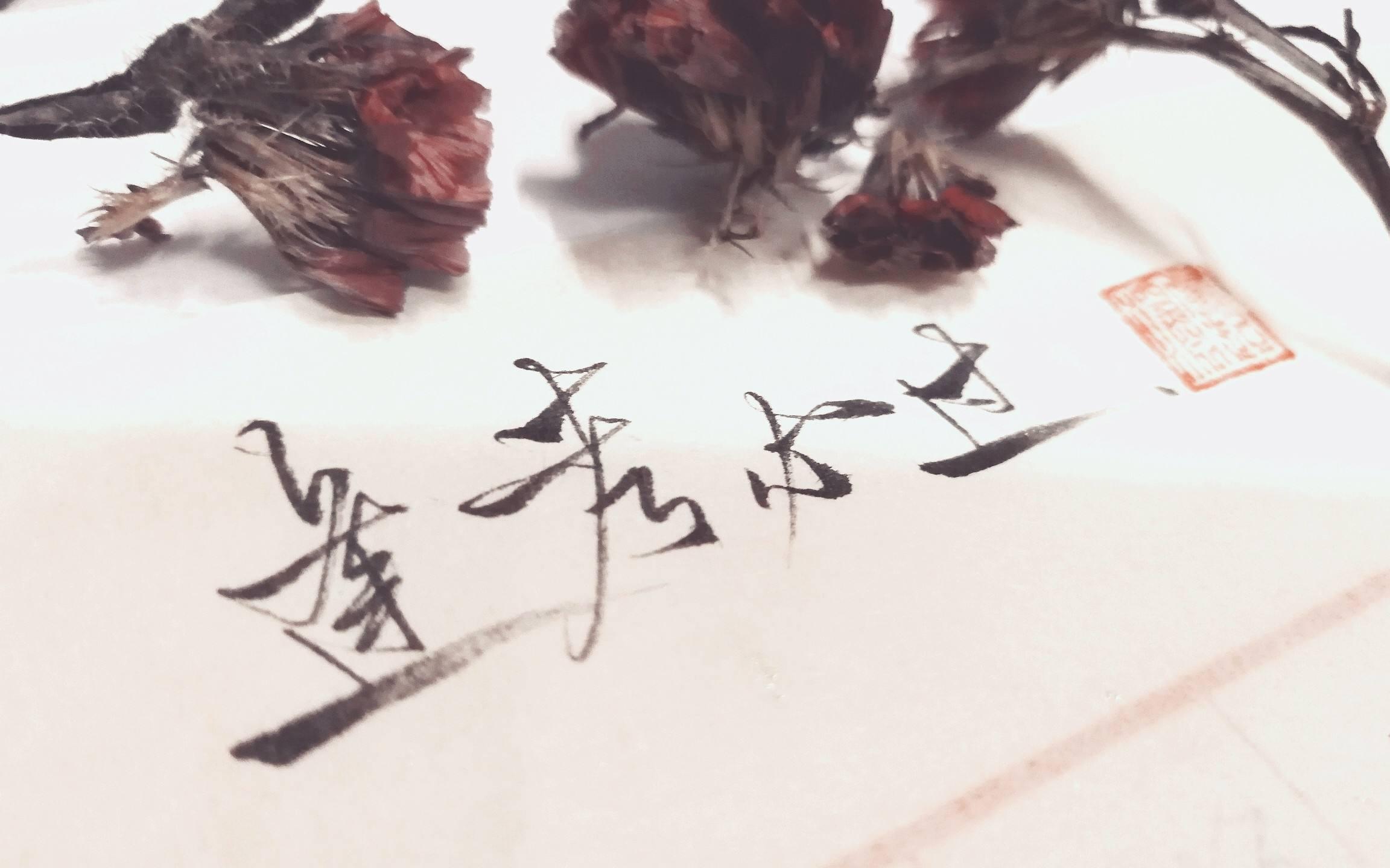 深圳成人高考专业